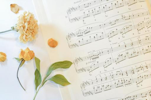Dried flowers and sheet music