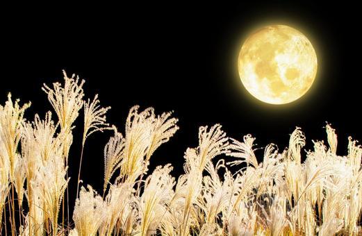 Jyugoya_Mid-Autumn Moon