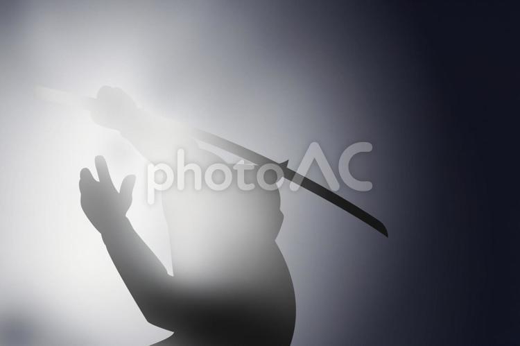 忍者の影の写真