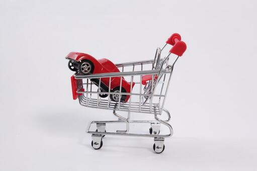 Shopping cart 24