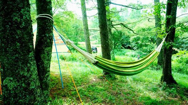 Green hammock on the campsite