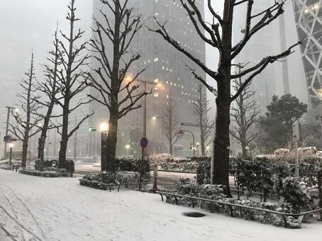 Shinjuku in the snow