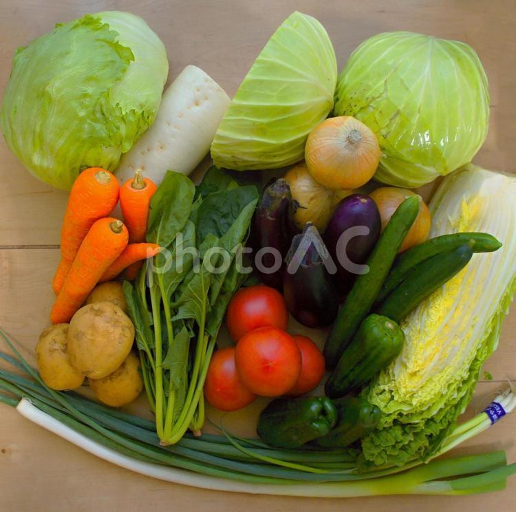 野菜まとめ買いの写真