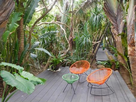 Chair in the jungle (rest space)