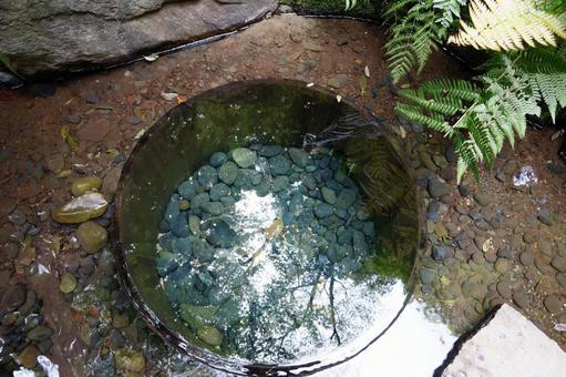 Kiyomasa Well Meiji Jingu