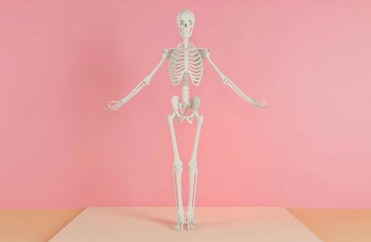 Skeleton F who decides yoga pose