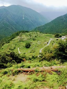 기후 마추피추 하늘 차밭 기후현 관광 명소 절경 전망 8 월 산 녹색 자연 풍경 세로 이미지