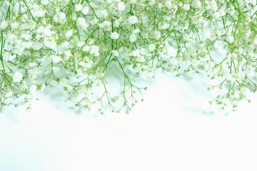 Flower frame Botanical haze grass background Background material