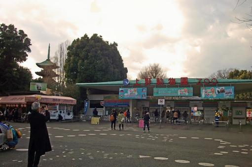 """Nippori, Yanaka, Ueno Tokyo Bottom town walking """"Shinki Ueno Zoo"""""""