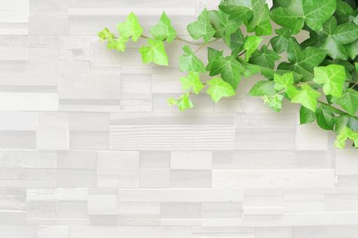 White grain and ivy background