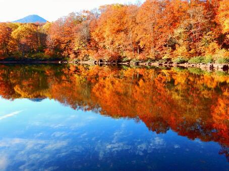 Myoko series (Sennin pond showing autumn leaves and the sky)