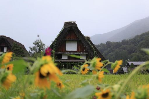 Scenery of architectural scenery
