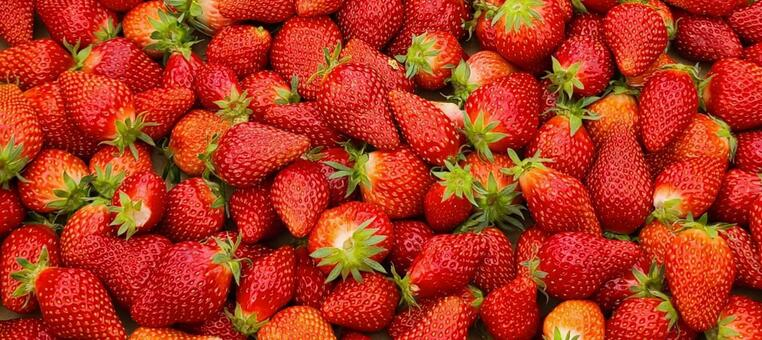 Full of strawberries