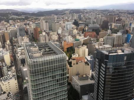 Flock of skyscrapers Local city Urban