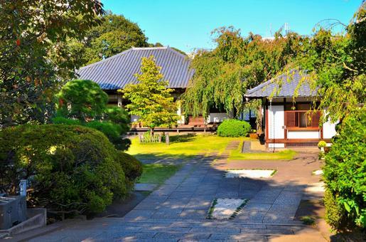 아오야마 묘지에서