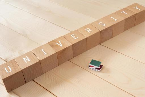"University, entrance exam, exam | Building blocks and miniature books with ""UNIVERSITY"" written on them"