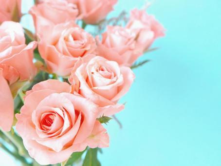 可愛的粉紅玫瑰花束