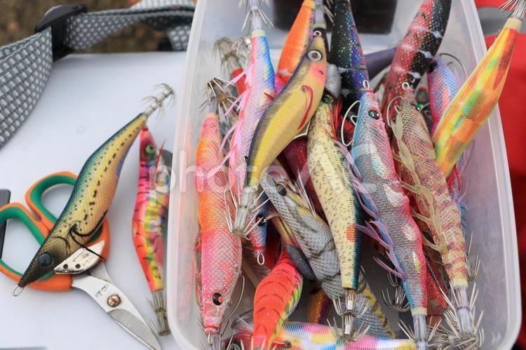釣り道具・エギングの写真