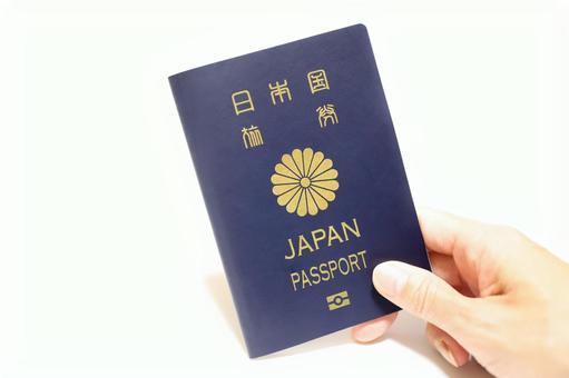 여권 단체의 이미지